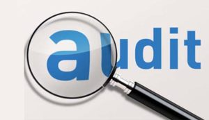 assessment and audit rules